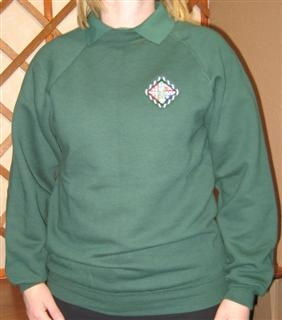 sweatshirtcroppedWinCE1.jpg