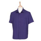 H595 Purple