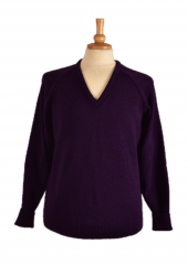 SARV front in purple