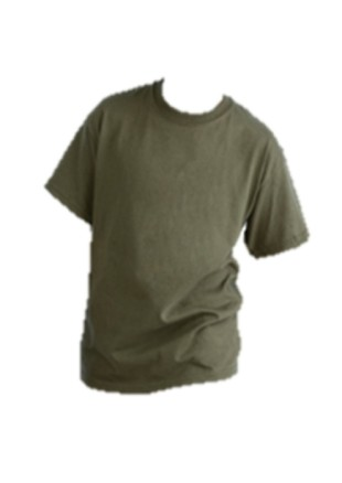 gildankidsTshirt.jpg