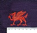 Dragon (England) (41)