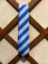 Darvel Primary School Tie