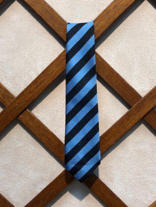 Galston Primary School Tie